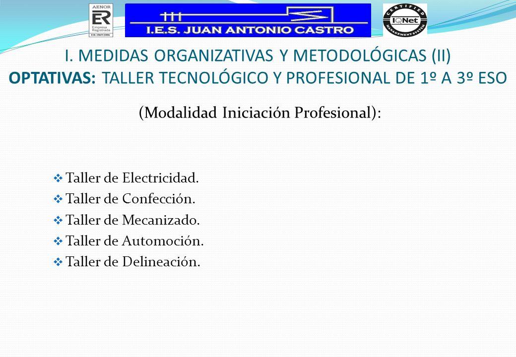 (Modalidad Iniciación Profesional): Taller de Electricidad. Taller de Confección. Taller de Mecanizado. Taller de Automoción. Taller de Delineación. I