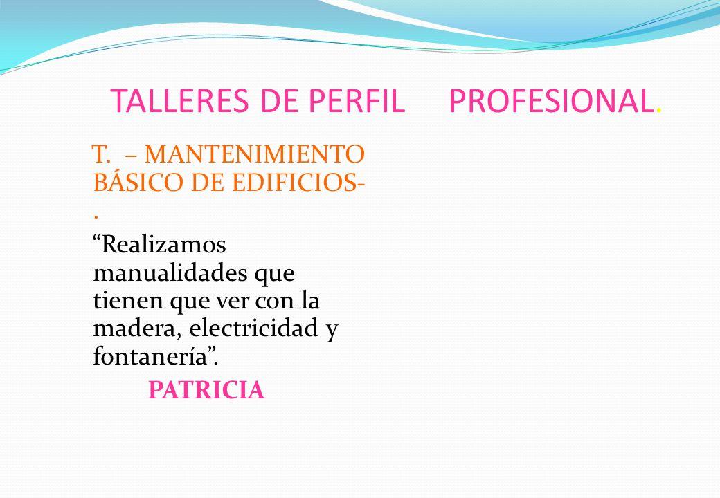 TALLERES DE PERFIL PROFESIONAL.T.COMPETENCIA SOCIAL.