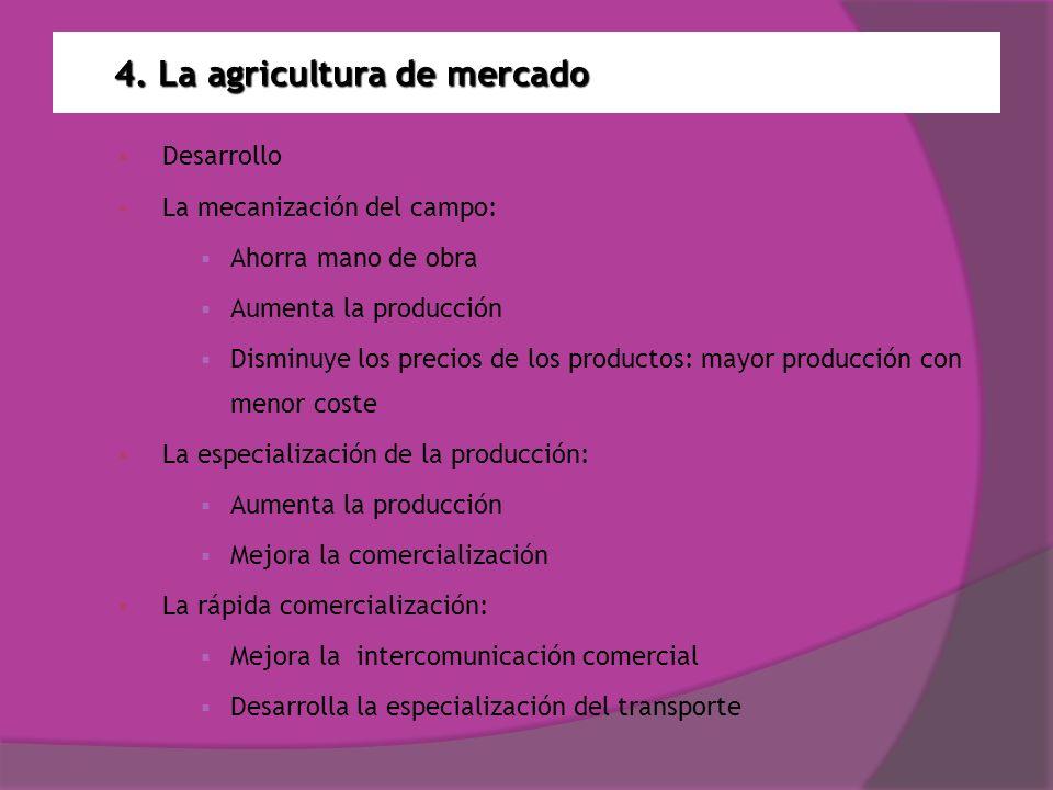 4. La agricultura de mercado Desarrollo La mecanización del campo: Ahorra mano de obra Aumenta la producción Disminuye los precios de los productos: m