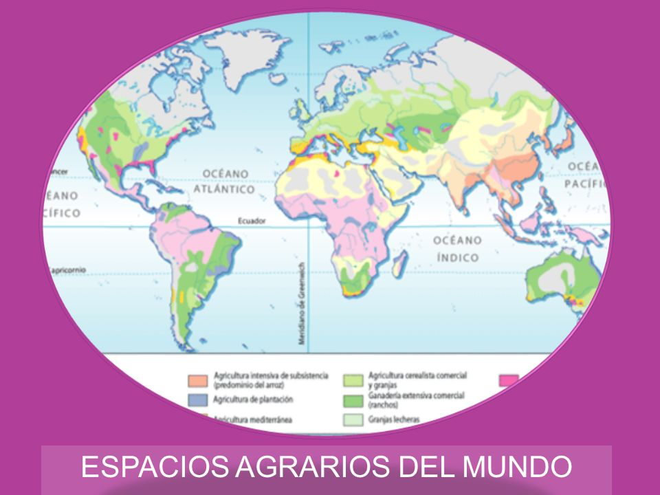 ESPACIOS AGRARIOS DEL MUNDO