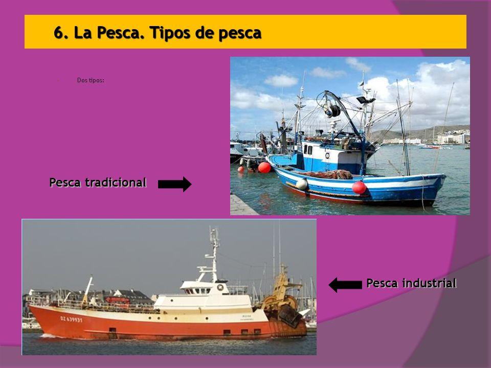 6. La Pesca. Tipos de pesca Dos tipos: Pesca tradicional Pesca industrial