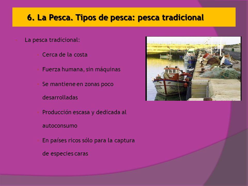 6. La Pesca. Tipos de pesca: pesca tradicional La pesca tradicional: Cerca de la costa Fuerza humana, sin máquinas Se mantiene en zonas poco desarroll