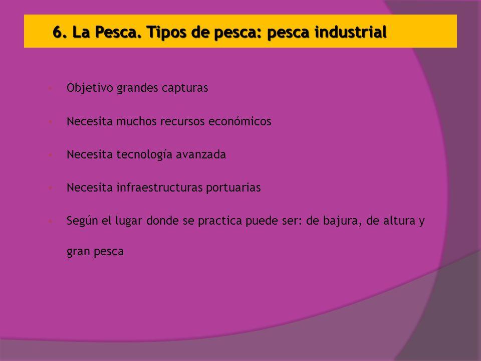 6. La Pesca. Tipos de pesca: pesca industrial Objetivo grandes capturas Necesita muchos recursos económicos Necesita tecnología avanzada Necesita infr