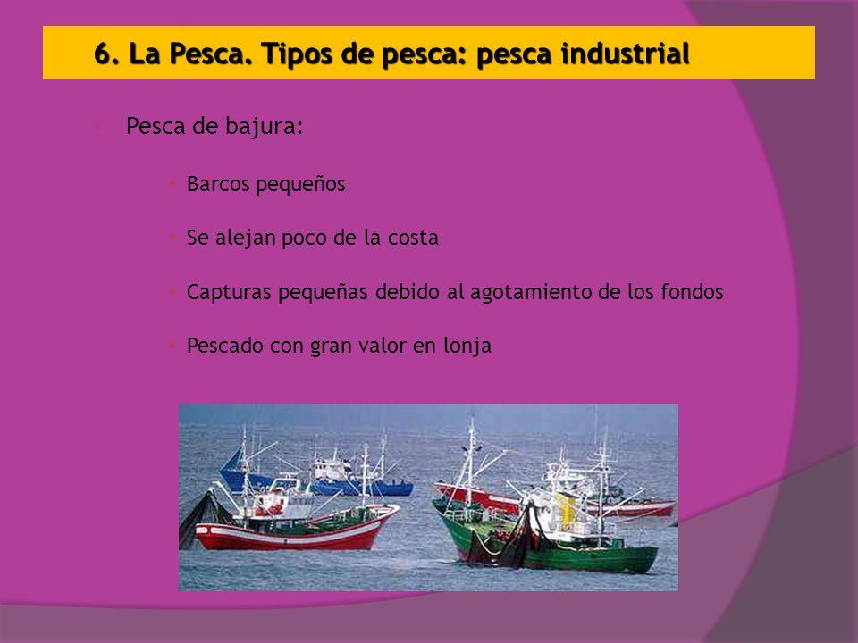 6. La Pesca. Tipos de pesca: pesca industrial Pesca de bajura: Barcos pequeños Se alejan poco de la costa Capturas pequeñas debido al agotamiento de l