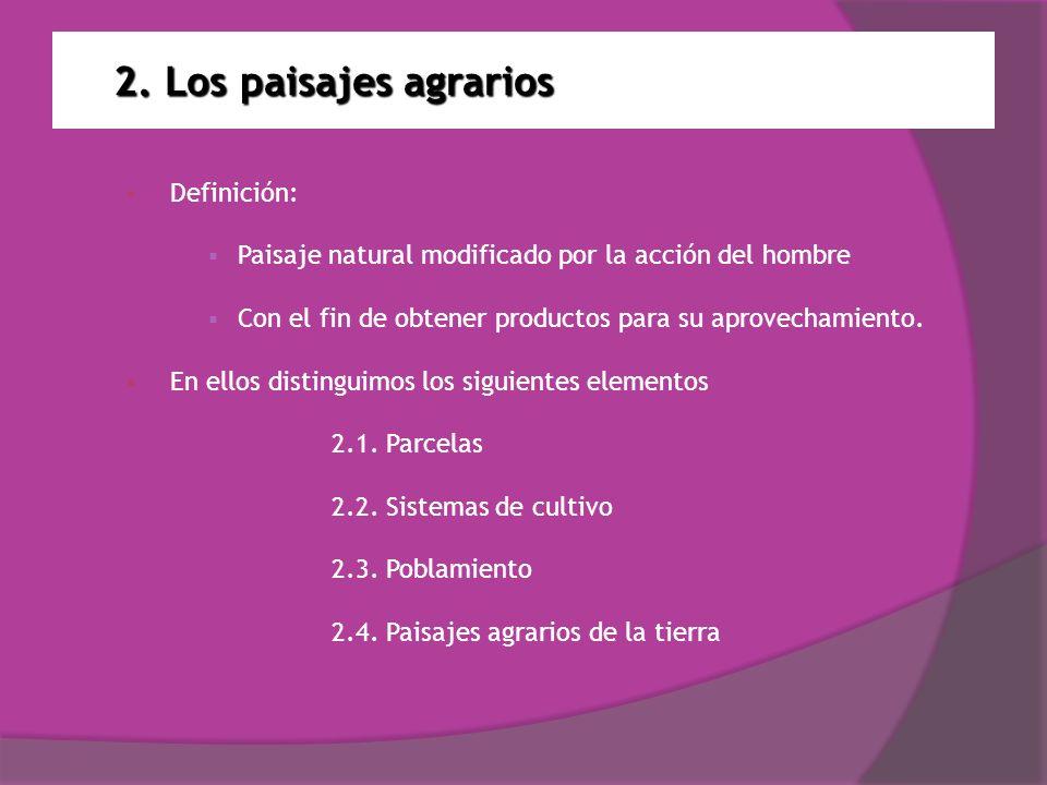 2. Los paisajes agrarios Definición: Paisaje natural modificado por la acción del hombre Con el fin de obtener productos para su aprovechamiento. En e