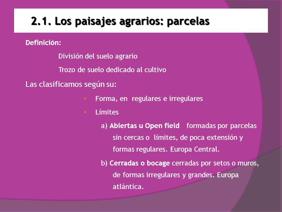 2.1. Los paisajes agrarios: parcelas Open field Bocage