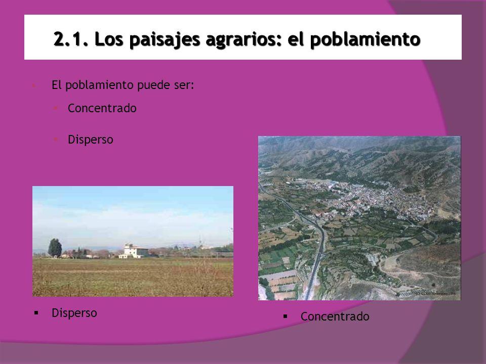 2.1. Los paisajes agrarios: el poblamiento El poblamiento puede ser: Concentrado Disperso Concentrado