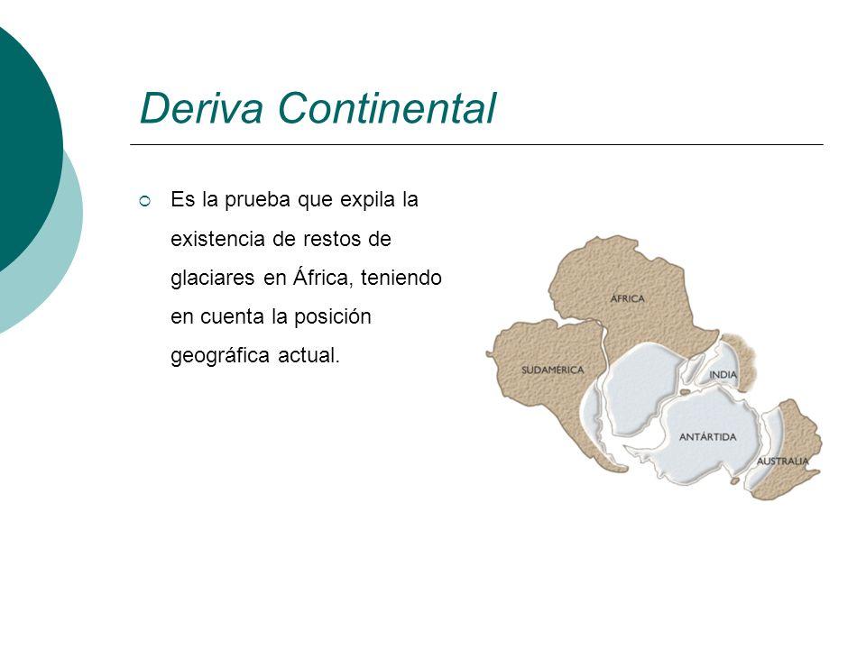 Deriva Continental Es la prueba que expila la existencia de restos de glaciares en África, teniendo en cuenta la posición geográfica actual.
