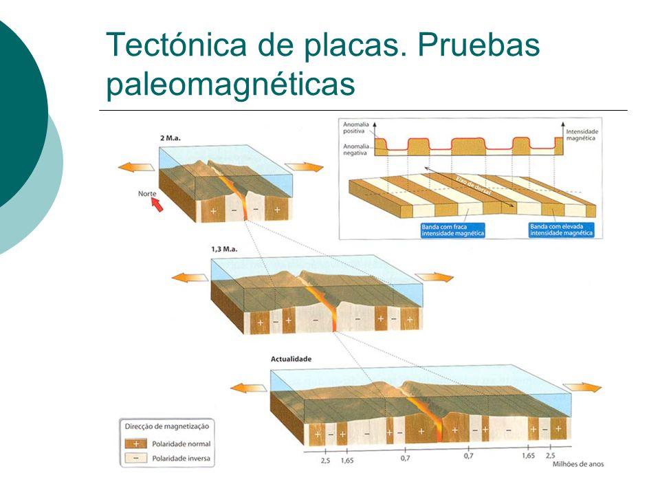 Tectónica de placas. Pruebas paleomagnéticas