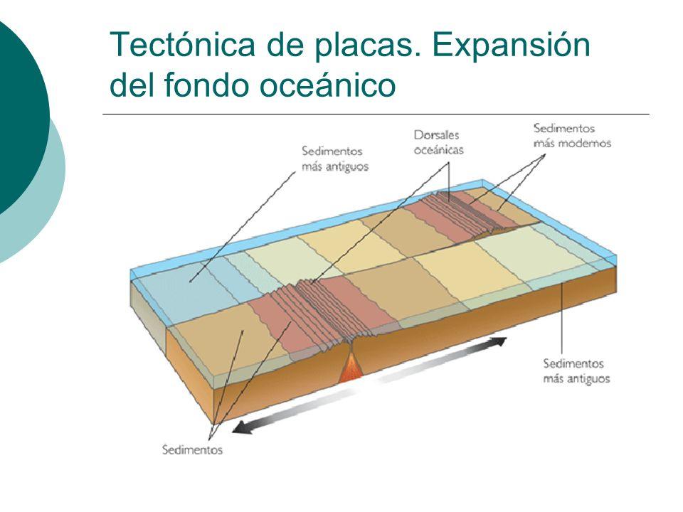 Tectónica de placas. Expansión del fondo oceánico