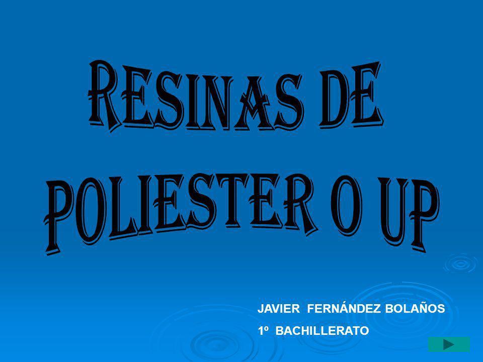 JAVIER FERNÁNDEZ BOLAÑOS 1º BACHILLERATO