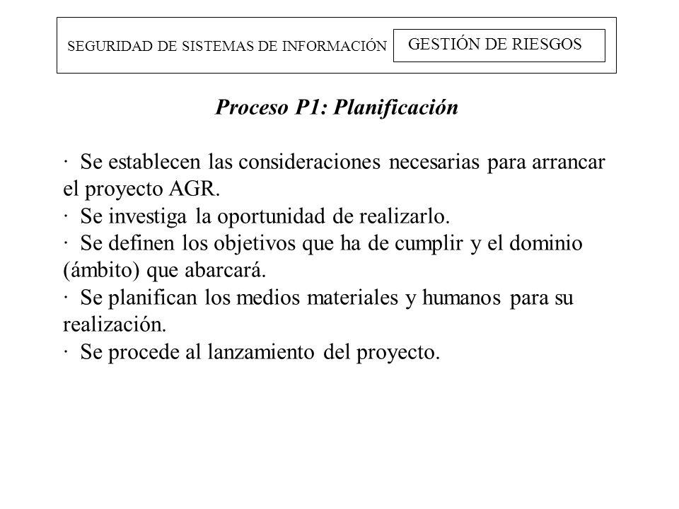 SEGURIDAD DE SISTEMAS DE INFORMACIÓN GESTIÓN DE RIESGOS Proceso P1: Planificación · Se establecen las consideraciones necesarias para arrancar el proy