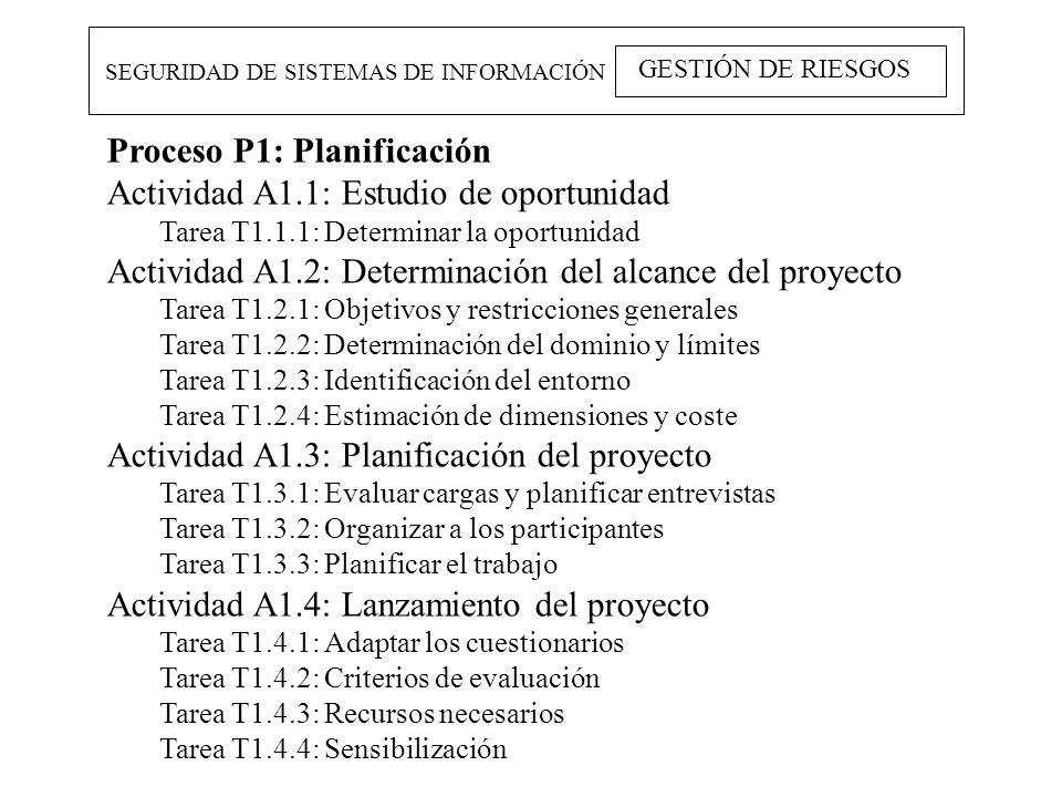 SEGURIDAD DE SISTEMAS DE INFORMACIÓN GESTIÓN DE RIESGOS Proceso P1: Planificación Actividad A1.1: Estudio de oportunidad Tarea T1.1.1: Determinar la o
