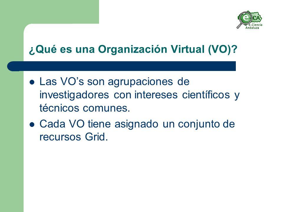 ¿Qué es una Organización Virtual (VO).