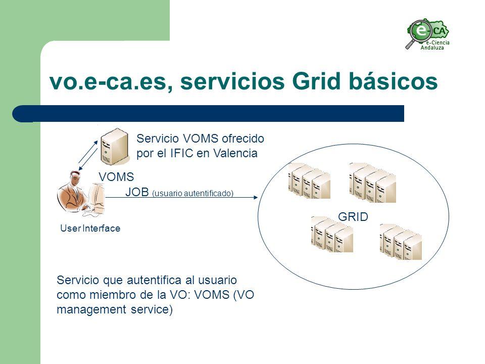 vo.e-ca.es, servicios Grid básicos GRID JOB (usuario autentificado) User Interface VOMS Servicio que autentifica al usuario como miembro de la VO: VOMS (VO management service) Servicio VOMS ofrecido por el IFIC en Valencia