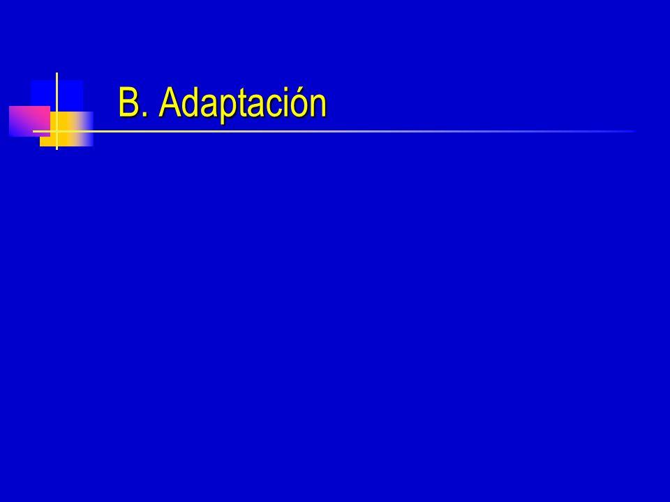 B. Adaptación