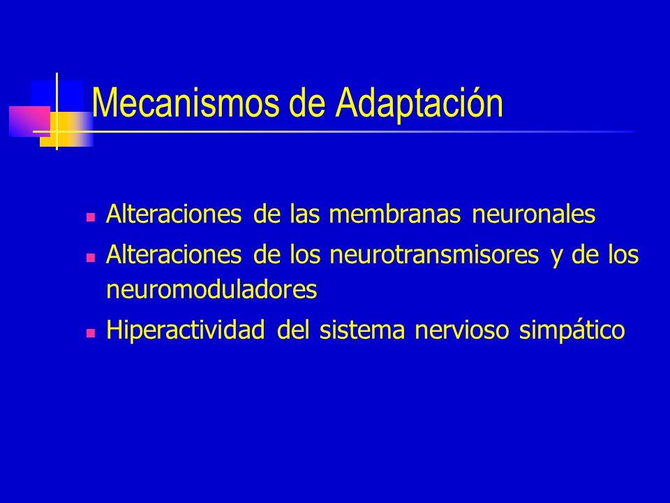 Mecanismos de Adaptación Alteraciones de las membranas neuronales Alteraciones de los neurotransmisores y de los neuromoduladores Hiperactividad del sistema nervioso simpático