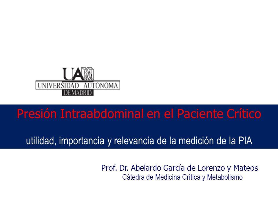 Prof. Dr. Abelardo García de Lorenzo y Mateos Cátedra de Medicina Crítica y Metabolismo Presión Intraabdominal en el Paciente Crítico utilidad, import