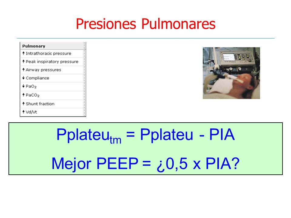 Presiones Pulmonares Pplateu tm = Pplateu - PIA Mejor PEEP = ¿0,5 x PIA?