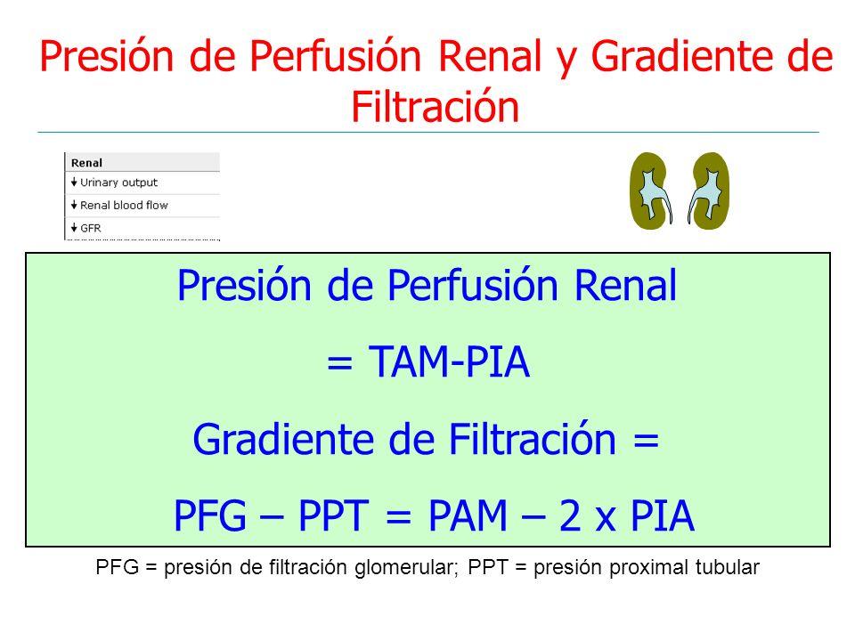 Presión de Perfusión Renal y Gradiente de Filtración Presión de Perfusión Renal = TAM-PIA Gradiente de Filtración = PFG – PPT = PAM – 2 x PIA PFG = pr