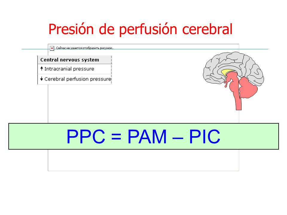 Presión de perfusión cerebral PPC = PAM – PIC