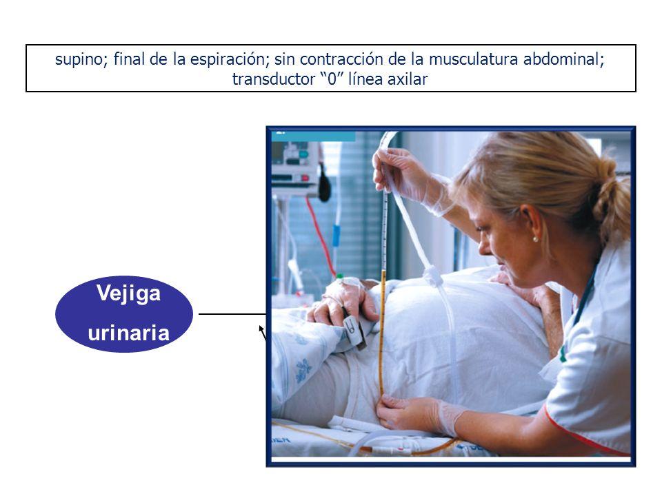 Vejiga urinaria Foley salino N 25 ml Trasductor de Presión supino; final de la espiración; sin contracción de la musculatura abdominal; transductor 0