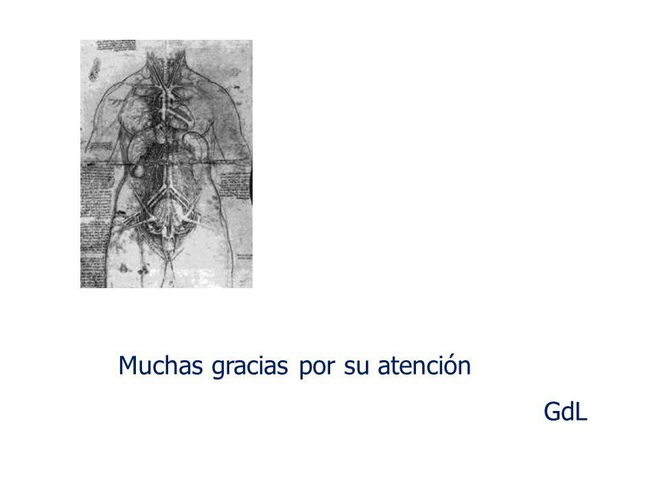 Muchas gracias por su atención GdL