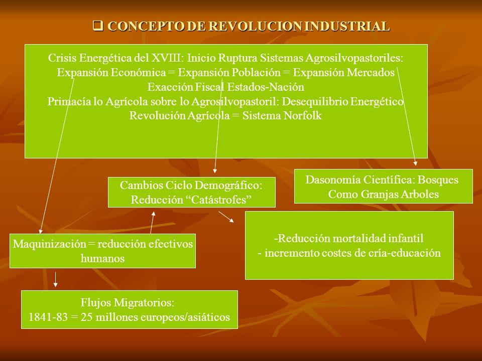 CONCEPTO DE REVOLUCION INDUSTRIAL CONCEPTO DE REVOLUCION INDUSTRIAL Crisis Energética del XVIII: Inicio Ruptura Sistemas Agrosilvopastoriles: Expansió