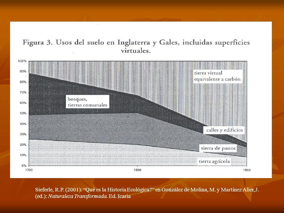 Sieferle, R.P. (2001): Qué es la Historia Ecológica? en González de Molina, M. y Martínez Alier,J. (ed.): Naturaleza Transformada. Ed. Icaria