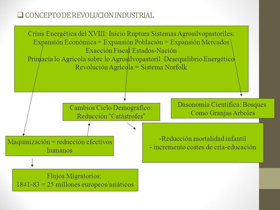 CONCEPTO DE REVOLUCION INDUSTRIAL REVOLUCIÓN INDUSTRIAL COMO RESPUESTA A ESCASEZ CAMBIO PARADIGMA CIVILIZATORIO DESARROLLO INNOVACIONES TECNICAS INCREMENTO COSTE MARGINAL ENERGIA ANIMAL LEÑA = CARBON = FERROCARIL = ENERGIA FOSIL INCREMENTO PRECIO RECURSOS MATERIAS PRIMAS Dimensión Institucional: Sociedad Lucro-Dinero-Ciencia CAPITALISMO CREA ESCASEZ