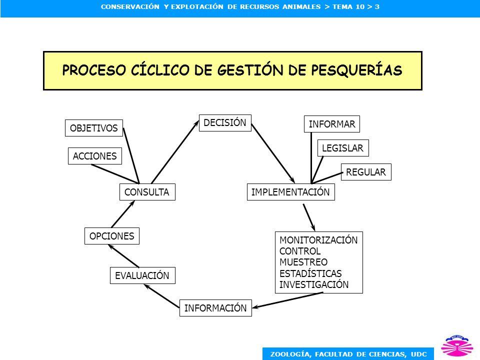 ZOOLOGÍA, FACULTAD DE CIENCIAS, UDC CONSERVACIÓN Y EXPLOTACIÓN DE RECURSOS ANIMALES > TEMA 10 > 4 RELACIONES ENTRE CIENCIA, GESTIÓN Y PARTICIPACIÓN DE USUARIOS GESTIÓN (desarrollo de estrategias de gestión) INVESTIGACIÓN CIENTÍFICA (generación de información biológica) USUARIOS (aportaciones en la obtención de información biológica y desarrollo de estrategias de gestión) Límites biológicos y riesgo Opciones a evaluar Campañas cooperativas, conocimiento local Diseño de muestreos, requerimientos de información Objetivos, opciones preferidas, impactos Limitaciones por política de conservación
