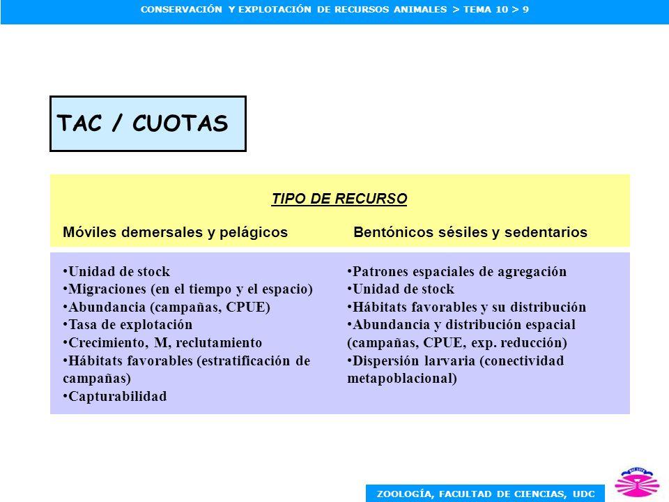 ZOOLOGÍA, FACULTAD DE CIENCIAS, UDC CONSERVACIÓN Y EXPLOTACIÓN DE RECURSOS ANIMALES > TEMA 10 > 10 REGULACIÓN DE ESFUERZO Bentónicos sésiles y sedentariosMóviles demersales y pelágicos TIPO DE RECURSO Patrones espaciales de agregación Unidad de stock Dispersión y migración (para vedas espaciales y temporales) CPUE (para límites de esfuerzo) Marcado-recaptura (control durante campaña) Vulnerabilidad y su distribución espacial Unidad de stock Migraciones (para vedas espaciales y/o temporales) Reclutamiento Cambios de capturabilidad con tamaño de stock Marcado-recaptura Crecimiento Capturas y esfuerzo
