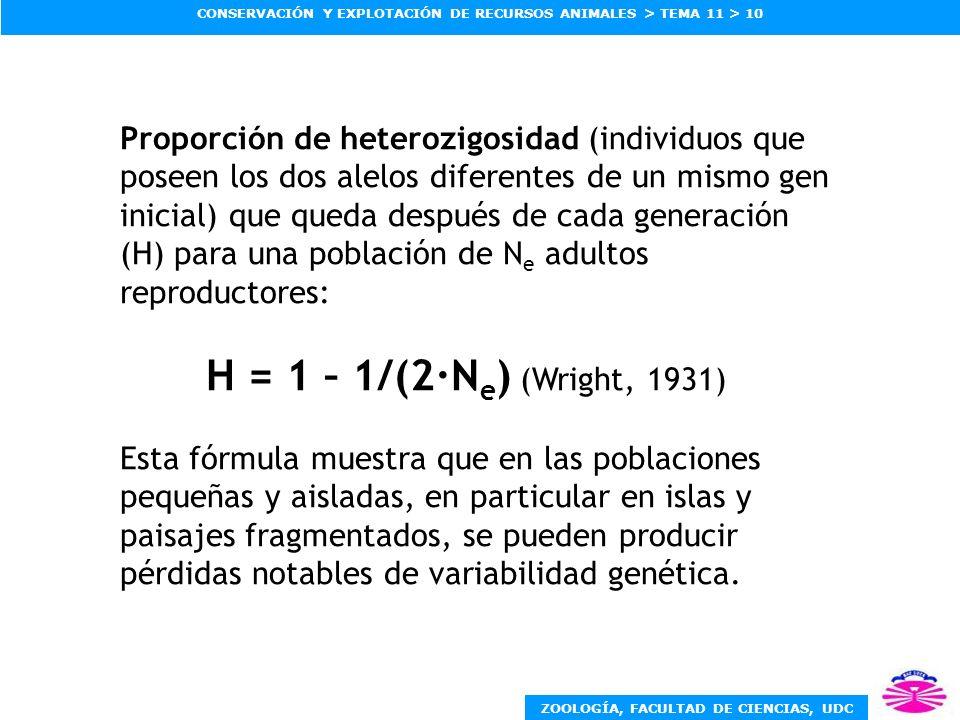 ZOOLOGÍA, FACULTAD DE CIENCIAS, UDC CONSERVACIÓN Y EXPLOTACIÓN DE RECURSOS ANIMALES > TEMA 11 > 10 Proporción de heterozigosidad (individuos que posee
