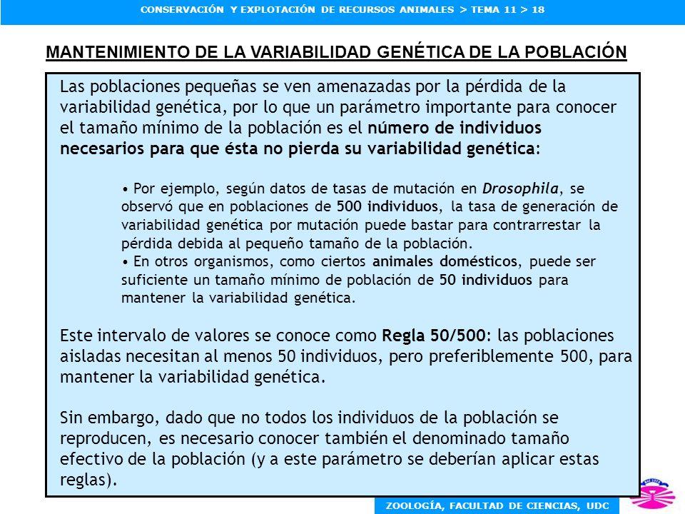 ZOOLOGÍA, FACULTAD DE CIENCIAS, UDC CONSERVACIÓN Y EXPLOTACIÓN DE RECURSOS ANIMALES > TEMA 11 > 18 MANTENIMIENTO DE LA VARIABILIDAD GENÉTICA DE LA POB