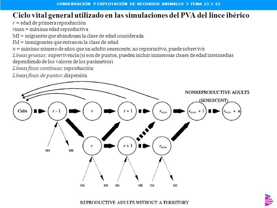 ZOOLOGÍA, FACULTAD DE CIENCIAS, UDC CONSERVACIÓN Y EXPLOTACIÓN DE RECURSOS ANIMALES > TEMA 13 > 15 Ciclo vital general utilizado en las simulaciones d