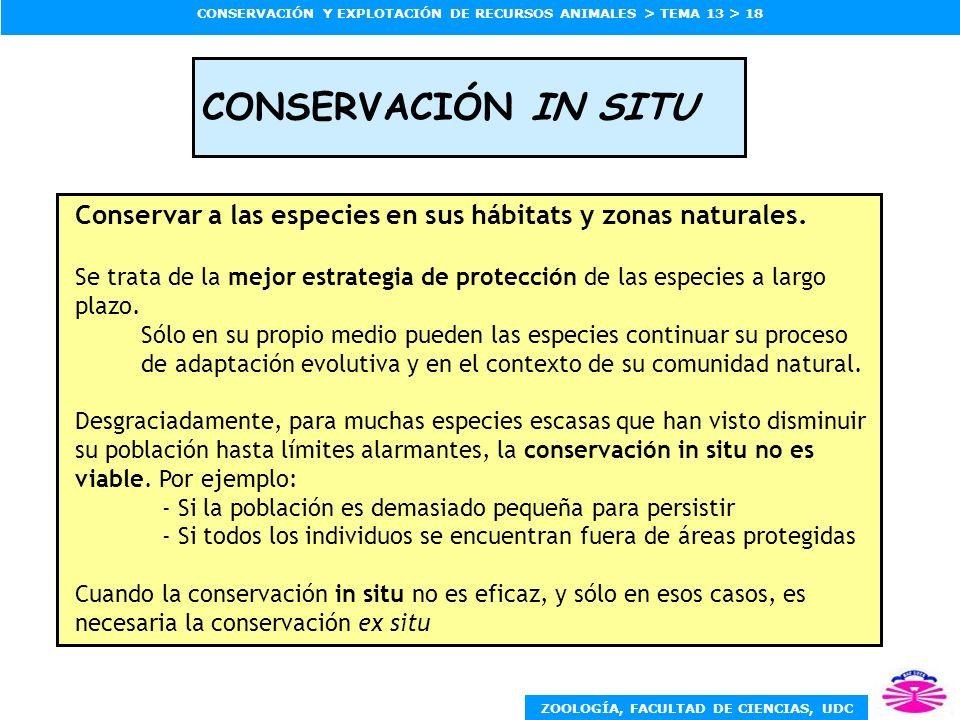 ZOOLOGÍA, FACULTAD DE CIENCIAS, UDC CONSERVACIÓN Y EXPLOTACIÓN DE RECURSOS ANIMALES > TEMA 13 > 18 CONSERVACIÓN IN SITU Conservar a las especies en su
