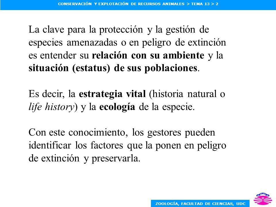 ZOOLOGÍA, FACULTAD DE CIENCIAS, UDC CONSERVACIÓN Y EXPLOTACIÓN DE RECURSOS ANIMALES > TEMA 13 > 2 La clave para la protección y la gestión de especies