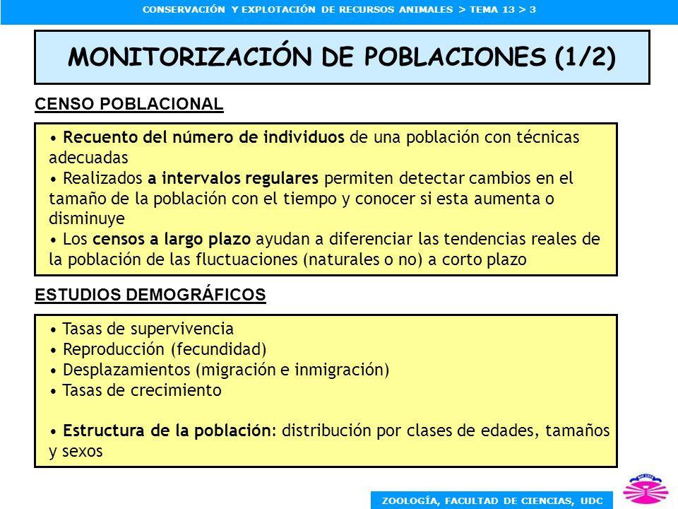 ZOOLOGÍA, FACULTAD DE CIENCIAS, UDC CONSERVACIÓN Y EXPLOTACIÓN DE RECURSOS ANIMALES > TEMA 13 > 4 MONITORIZACIÓN DE POBLACIONES (2/2) Número de las subpoblaciones (poblaciones locales) Distribución de éstas en el área geográfica Número de individuos, demografía y estructura de cada subpoblación Conectividad entre subpoblaciones (intercambio de individuos) Las metapoblaciones están formadas por un mosaico de poblaciones temporales unidas entre sí por algún grado de migración.
