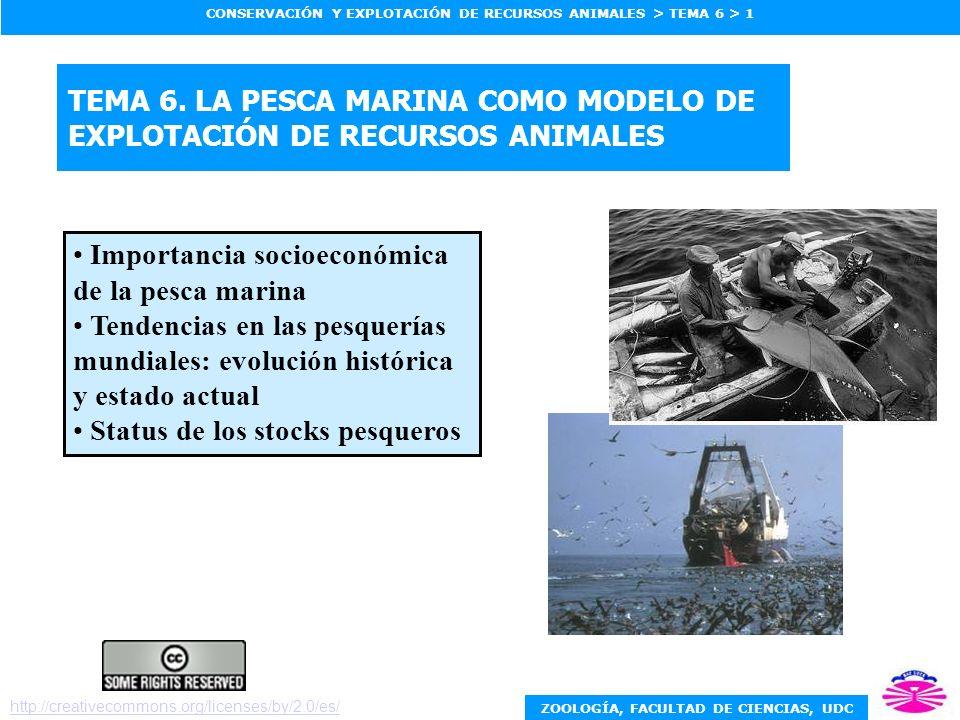 ZOOLOGÍA, FACULTAD DE CIENCIAS, UDC CONSERVACIÓN Y EXPLOTACIÓN DE RECURSOS ANIMALES > TEMA 6 > 1 TEMA 6. LA PESCA MARINA COMO MODELO DE EXPLOTACIÓN DE