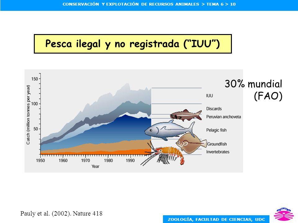ZOOLOGÍA, FACULTAD DE CIENCIAS, UDC CONSERVACIÓN Y EXPLOTACIÓN DE RECURSOS ANIMALES > TEMA 6 > 10 Pesca ilegal y no registrada (IUU) 30% mundial (FAO) Pauly et al.