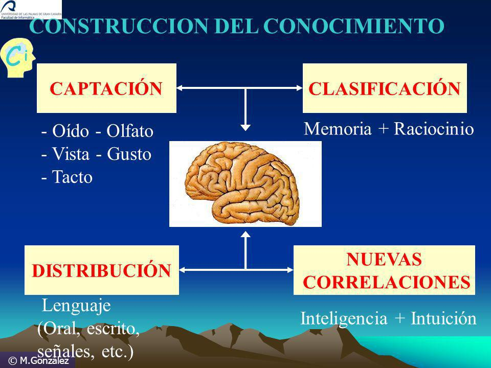 © M.González CONSTRUCCION DEL CONOCIMIENTO CAPTACIÓN - Oído - Olfato - Vista - Gusto - Tacto CLASIFICACIÓN Memoria + Raciocinio DISTRIBUCIÓN Lenguaje