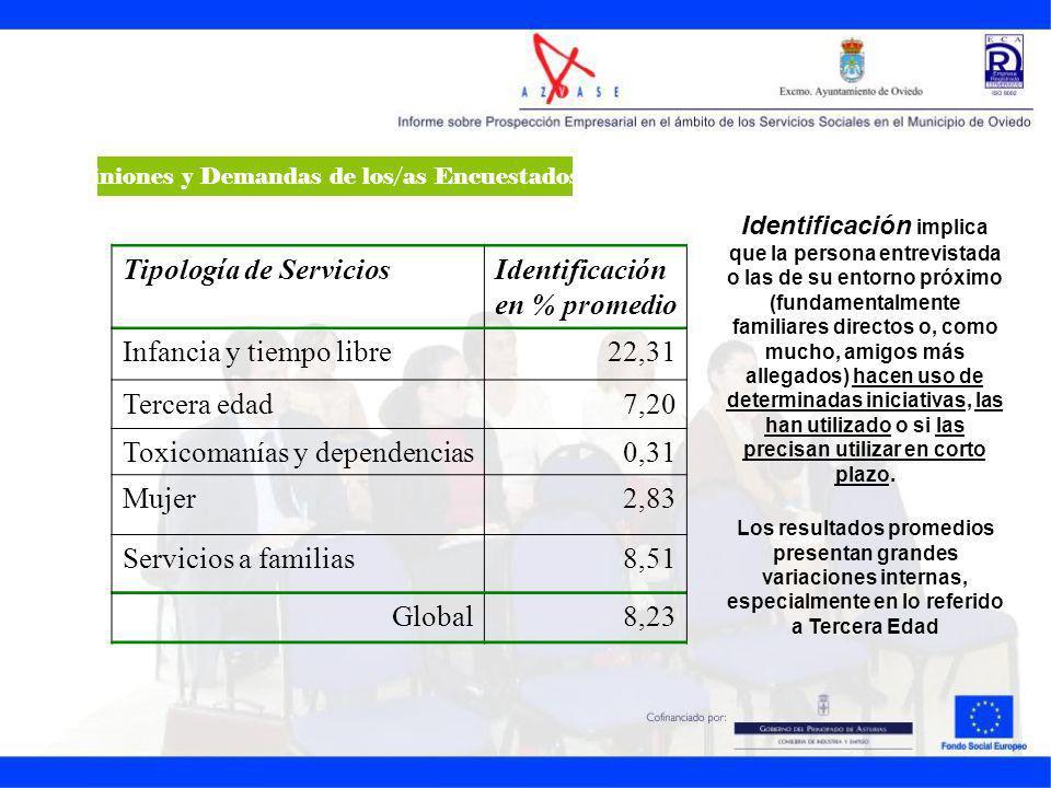 Tipología de ServiciosIdentificación en % promedio Infancia y tiempo libre22,31 Tercera edad7,20 Toxicomanías y dependencias0,31 Mujer2,83 Servicios a