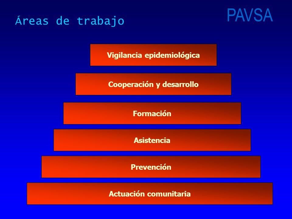 Vigilancia epidemiológica Prevención Asistencia Formación Actuación comunitaria Áreas de trabajo Cooperación y desarrollo PAVSA