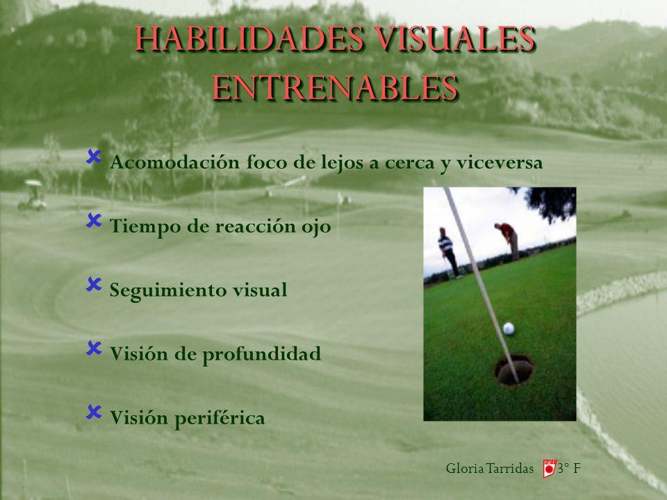 Gloria Tarridas 3º F HABILIDADES VISUALES ENTRENABLES Acomodación foco de lejos a cerca y viceversa Tiempo de reacción ojo Seguimiento visual Visión de profundidad Visión periférica