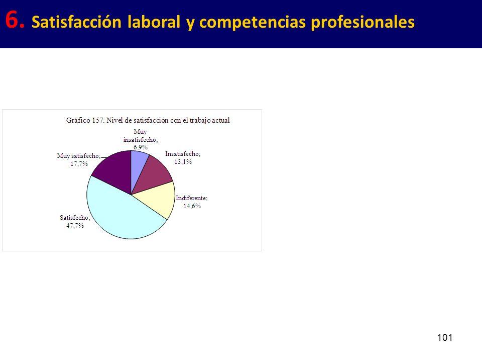 101 6. Satisfacción laboral y competencias profesionales