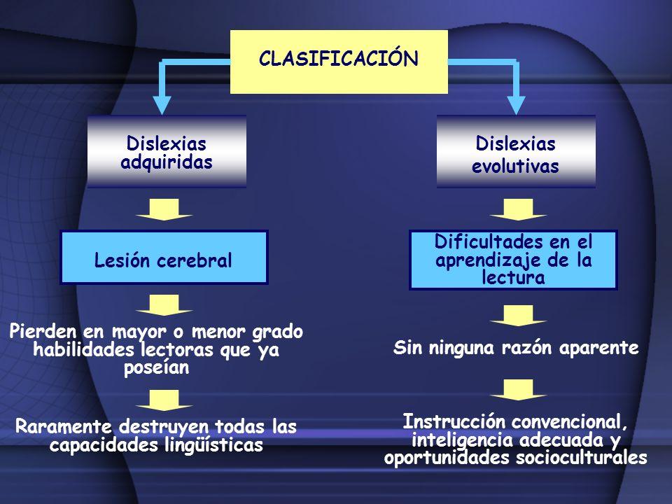 CLASIFICACIÓN Dislexias adquiridas Dislexias evolutivas Lesión cerebral Pierden en mayor o menor grado habilidades lectoras que ya poseían Raramente d