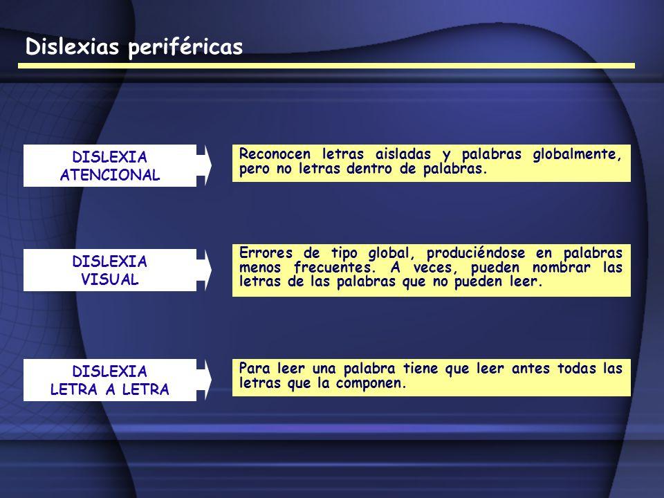 Dislexias periféricas DISLEXIA ATENCIONAL Reconocen letras aisladas y palabras globalmente, pero no letras dentro de palabras. DISLEXIA VISUAL Errores