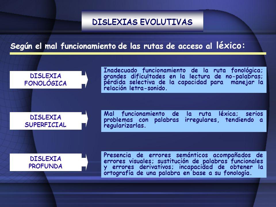 DISLEXIAS EVOLUTIVAS Según el mal funcionamiento de las rutas de acceso al léxico: DISLEXIA FONOLÓGICA Inadecuado funcionamiento de la ruta fonológica