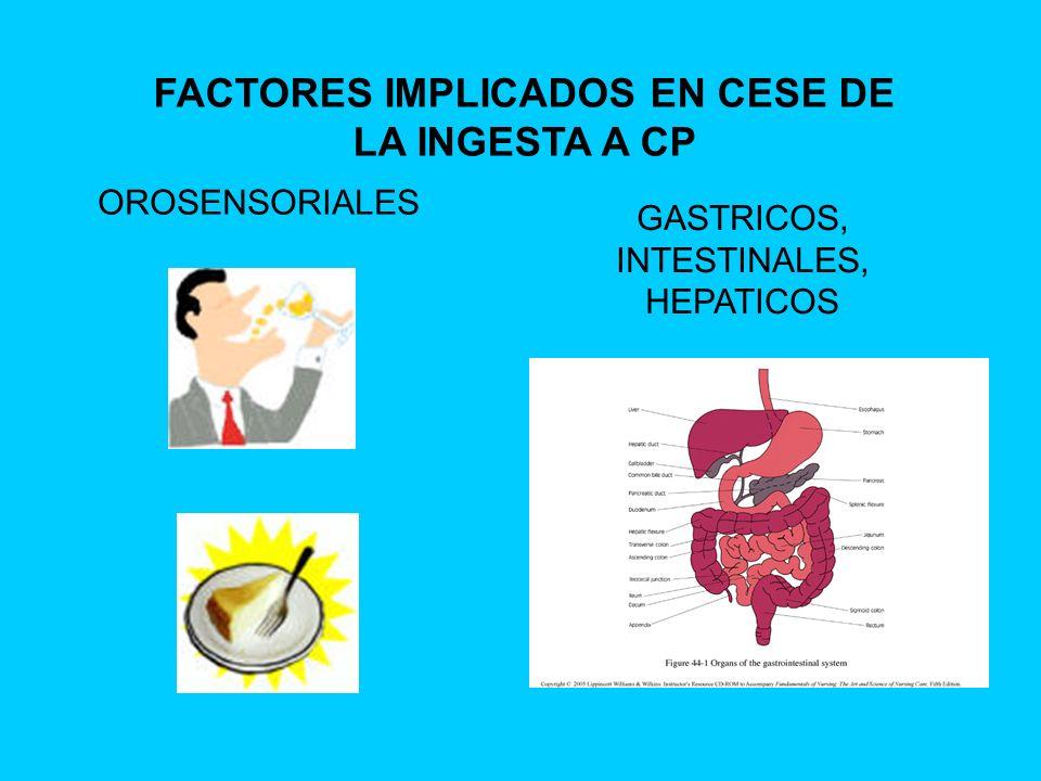 OROSENSORIALES GASTRICOS, INTESTINALES, HEPATICOS FACTORES IMPLICADOS EN CESE DE LA INGESTA A CP