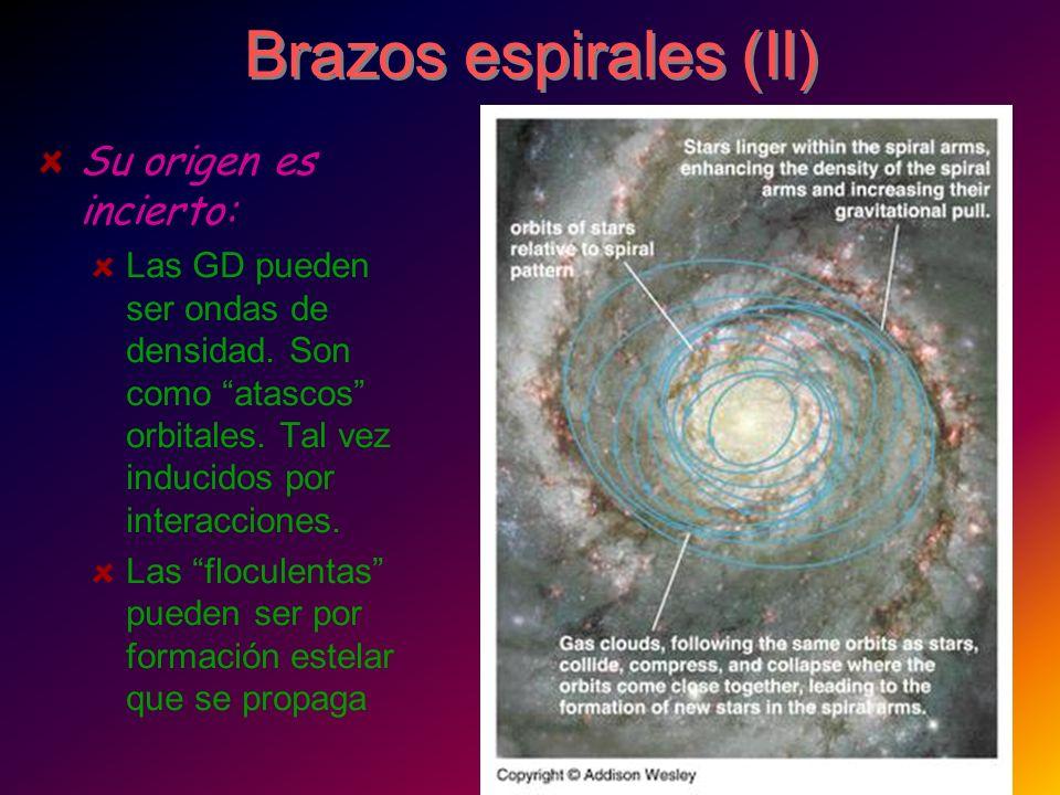 Brazos espirales (II) Su origen es incierto: Las GD pueden ser ondas de densidad. Son como atascos orbitales. Tal vez inducidos por interacciones. Las
